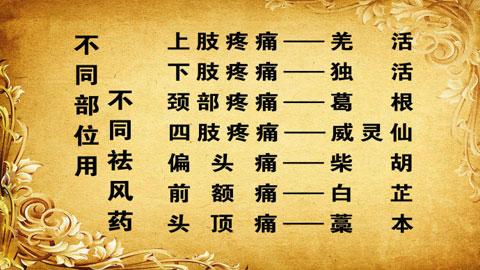 养生堂视频2013年02月19日,痛痹不留邪1,冯兴华,风湿,祛风邪