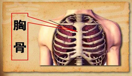 女子胃里没病得胃病_养生堂视频2013年05月10日,养生园里话养生1,李乾构,胃炎-北京卫视