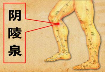 养生堂2013年6月21日视频,灵丹妙药身上找2,程凯,痰湿瘀阻,健脾化痰