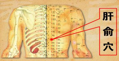 肝俞穴位位置图-肝俞穴位的作用