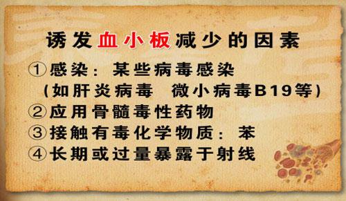 养生堂2013年6月25日视频,柯微君,侯雅军,清补得法 养血有道1,血热,出血