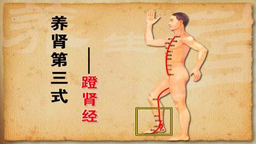 养生堂2013年8月28日视频,付国兵,一招三式强五脏5,养肾三式