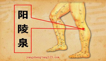 养生堂2015年1月28日视频,黄飞剑,护肝先辨寒热,疏肝,肝郁气滞