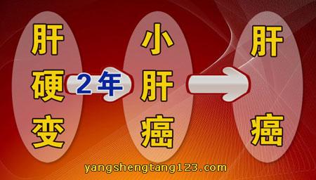 养生堂2015年4月28日视频,杨尹默,深藏不露的癌症1,肝癌