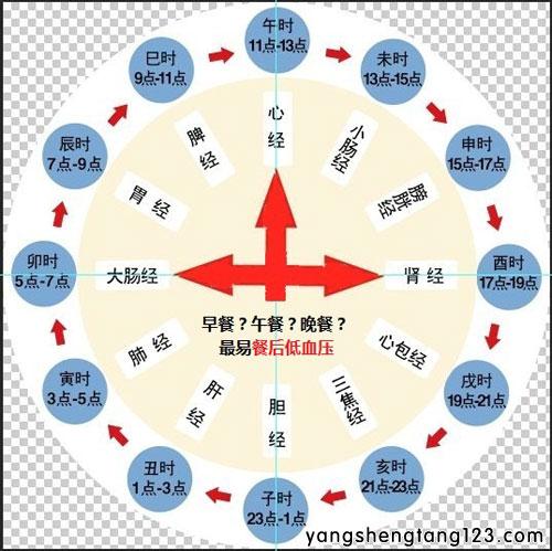 养生堂2015年7月26日视频,徐凤芹,童文新,调压重在控波动2,低血压