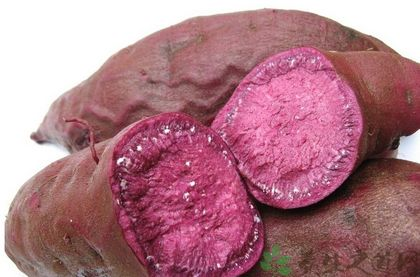 紫薯的功效与作用及食用方法-紫薯的营养价值