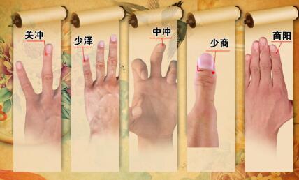 养生堂2015年12月30日视频,程凯,芈月传之中医之美,程氏针灸