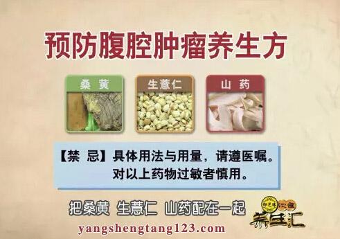 饮食养生汇2016年4月1日视频,张文彭,桑黄,桑树上的防癌法宝