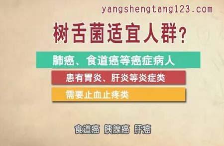 饮食养生汇2016年4月2日视频,张文彭,树舌灵芝,神奇的无腿灵芝