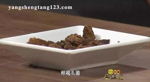 饮食养生汇2016年4月6日视频,张文彭,桦褐孔菌的功效与作用
