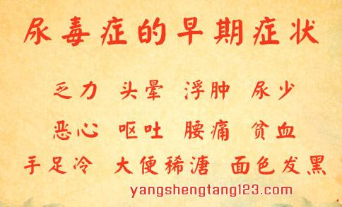 养生堂2016年5月25日视频,王肃季,警惕伤肾的误区1,肾病,尿毒症