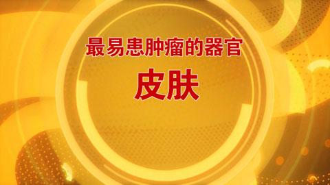 养生堂2016年12月24日视频,李航,防癌秘诀家中寻2,皮肤癌