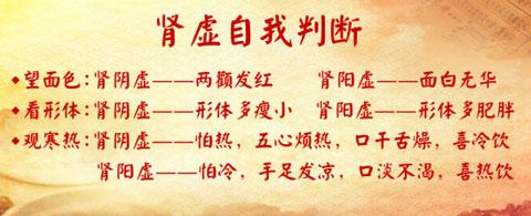 养生堂2017年1月6日视频,杨晋翔,冬令进补里的补虚食材,脾气虚