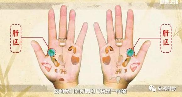 健康之路2017年9月19日视频,刘剑锋,手上的健康密码(中)