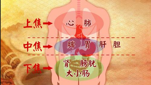 养生堂2017年9月25日视频,饶旺福,于振宣,通调水道补三焦