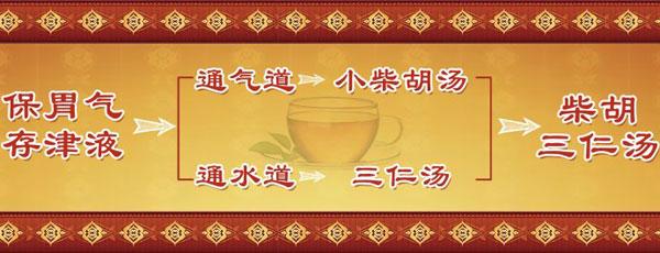 养生堂20180112视频,王文友,八旬名医养生经,小柴胡三仁汤方