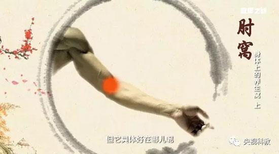 健康之路20180113,王莹莹,身体上的养生窝(上)极泉,委中