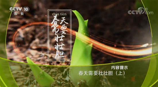 健康之路20180319视频,李志刚,春天需要壮壮胆(上)