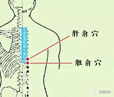 健康之路20180323,郝万山,逍遥丸,顺时养出健康来・春(三)