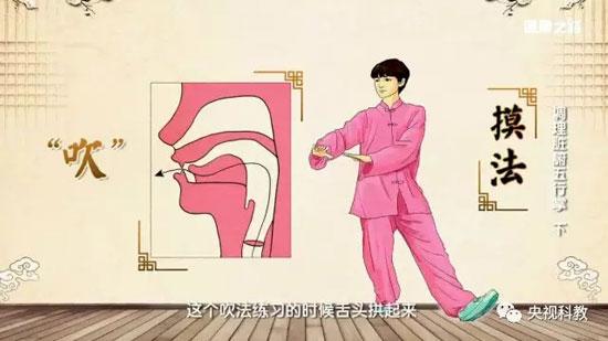 健康之路20180329视频,茹凯,调理脏腑五行掌(下)