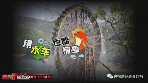 是真的吗20180623,用水车也能捕鱼?云南澄江县水车捕鱼