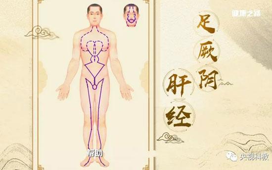 健康之路20180803,陈明,暖肝煎,龙胆泻肝丸,六经通畅一身轻5