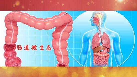 养生堂20180808,李明松,要长寿先肠寿,肠道健康,肠道溃疡