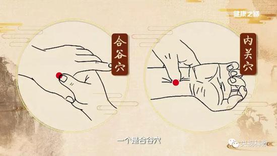 健康之路20180825,郭力恒,丹参饮,中医巧护心血管(下)