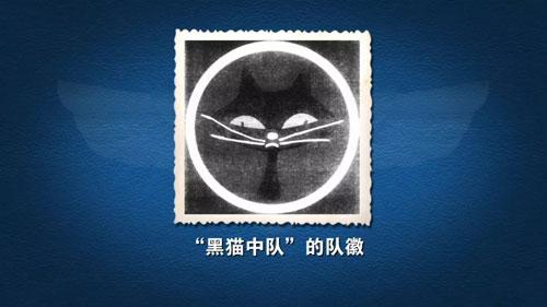 百家讲坛20181106,金永吉,中国空军故事第2部,5,黑猫中队覆灭记