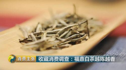 消费主张20181210视频,收藏消费调查:福鼎白茶越陈越香