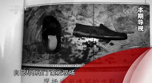 今日说法20190713,还手,董民刚,正当防卫,婚外情,河北巨鹿县