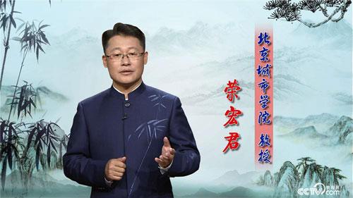 百家讲坛20190715,荣宏君,翰墨风骨郑板桥6,枝叶关情