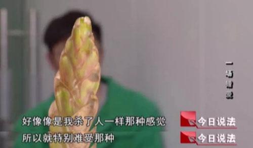 今日说法20190801,一场错爱,江苏金湖县,晓楠,张跃峰