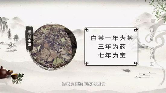 健康之路20190813,白茶功效与作用,白茶正确冲泡视频