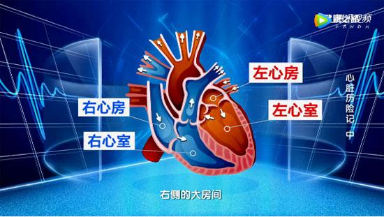 健康之路20190918,孟旭,心脏历险记(中)二尖瓣狭窄的表现