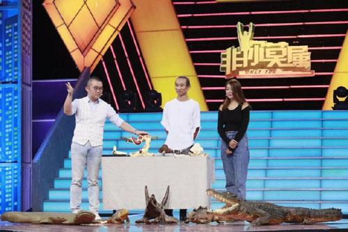 非你莫属20191104,段翔,姚越,李晟�F,张加成,流浪地球道具制作者