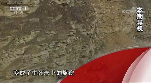今日说法20200120,回家的路拒绝眼泪(上)贵州纳雍,交通事故