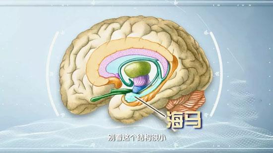 健康之路20200207,贾建平,老年性痴呆和老年健忘症的区别