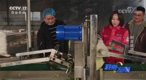 我爱发明,冬瓜削皮机,削皮旋风,赵来君,发明人联系电话方式