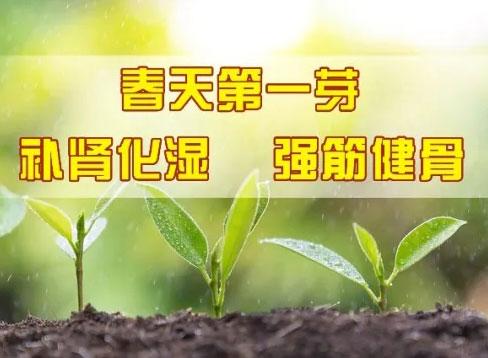 养生堂20200324,韦云,阳台上的养生之宝,芽菜,长寿芽,补肾祛湿