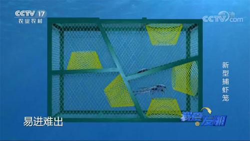 我爱发明,蒋荣生,新型捕虾笼,联系电话