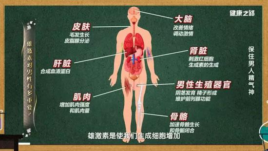 健康之路20200401,姜辉,缺乏雄激素该如何补充?保住男人精气神