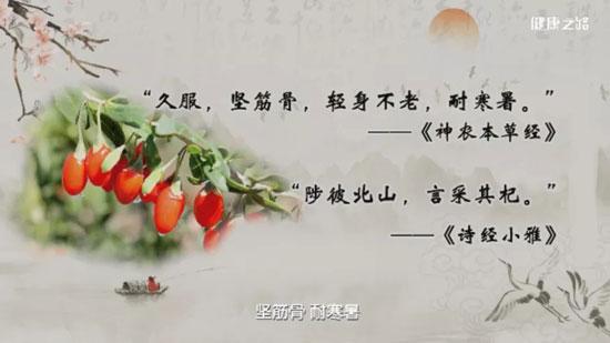 健康之路20200509,倪诚,什么体质的人不适合吃枸杞