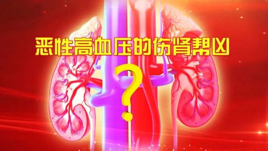 养生堂20200611,张爱华,李银平,警惕恶性高血压的伤肾帮凶