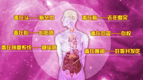 养生堂20200825,杨宝钟,揪出伤害血管的第四高,高同型半胱氨酸