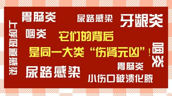 养生堂20200910,赵文景,入秋护肾先扶正,扶正护肾茶饮方