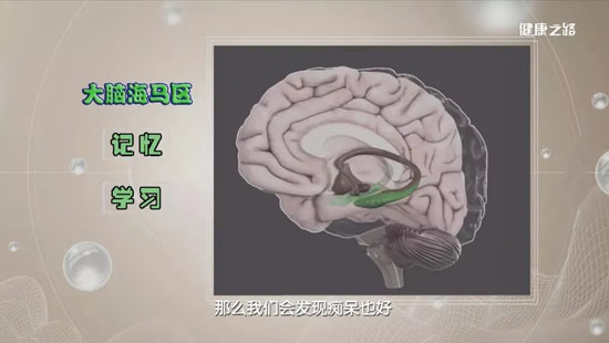 健康之路20200919,严翊,巧运动,防痴呆,3项运动预防老年痴呆症