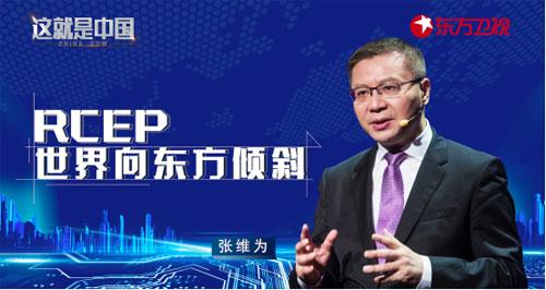 这就是中国第82期20201130,RCEP:世界向东方倾斜,张维为